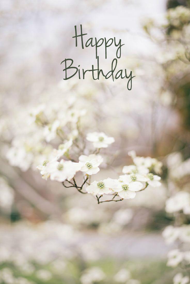 Birthday Quotes Description Happy Wish Flowers