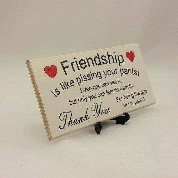 Description Best Friend Gift Funny Sign Birthday Present