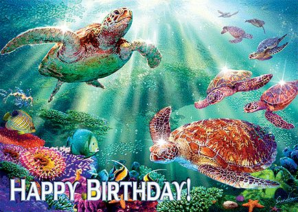 Birthday Quotes Description Hawaiian Cards For Facebook