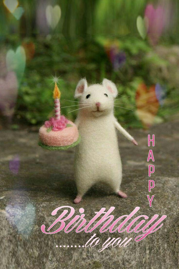 happy birthday wiches  happy birthday  askbirthday